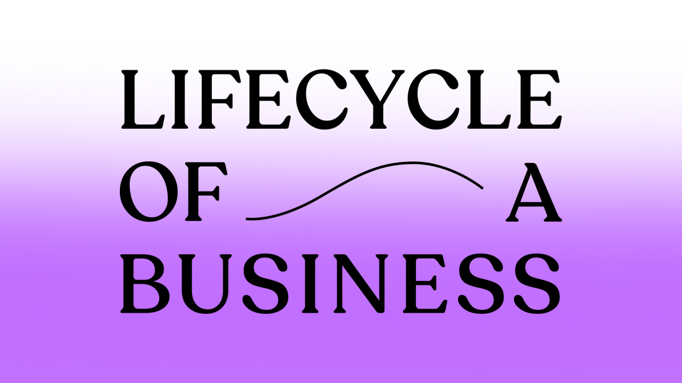 Lifecycle of a Business