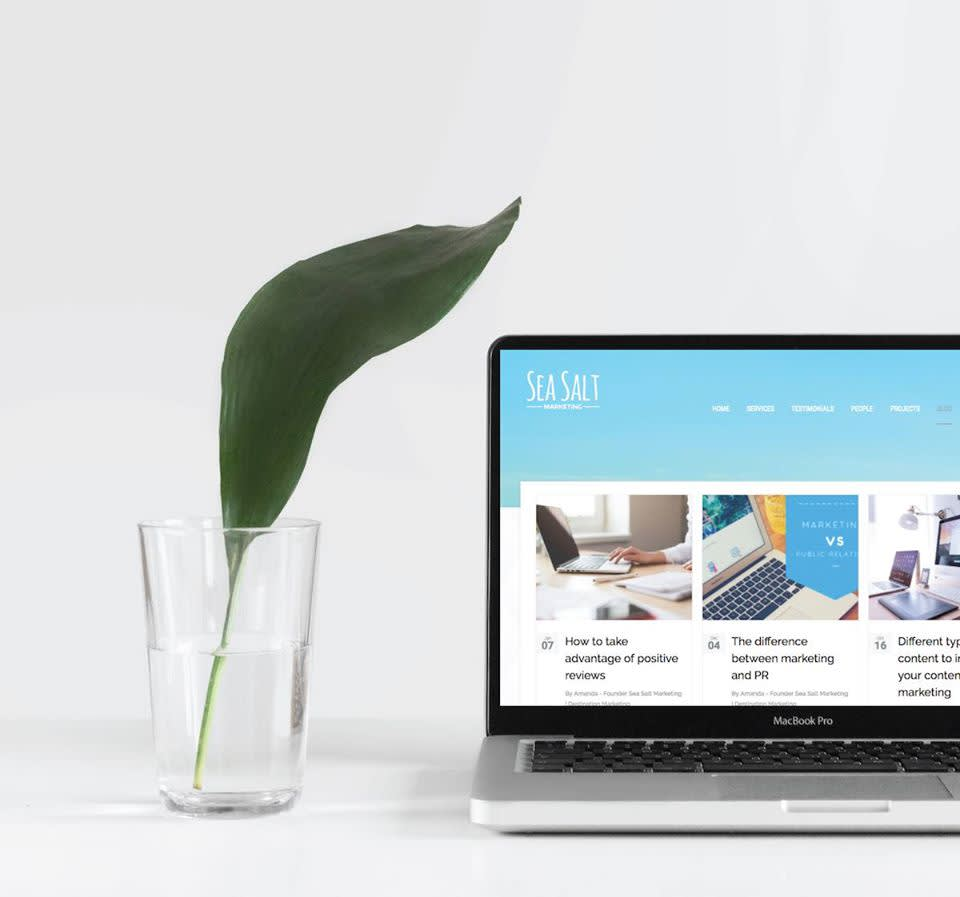 Image of opened mac laptop to right of a glass of water containing a green plant leaf. The opened laptop displays the Sea Salt Marketing website homepage.