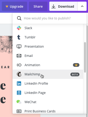 select mailchimp from dropdown