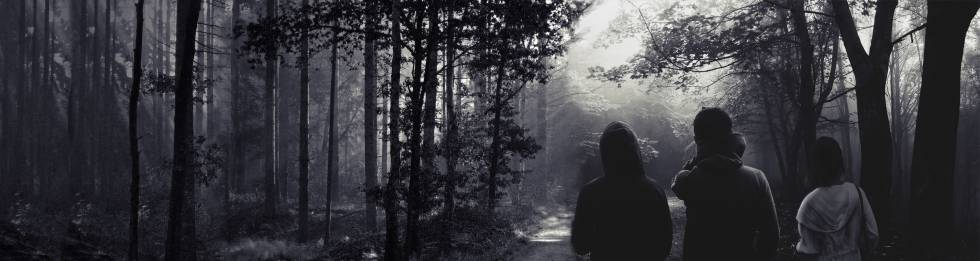 Image of people walking in the woods