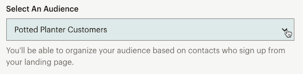 Landing Page Audience