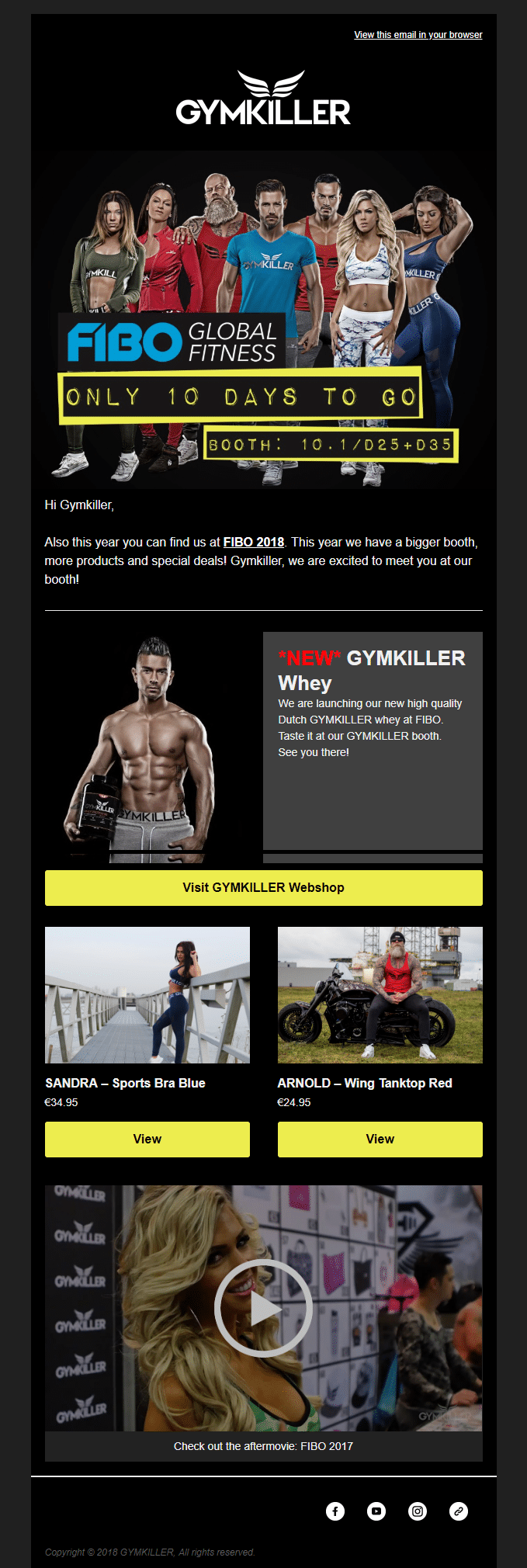 Screenshot of newsletter created for Gymkiller by agency