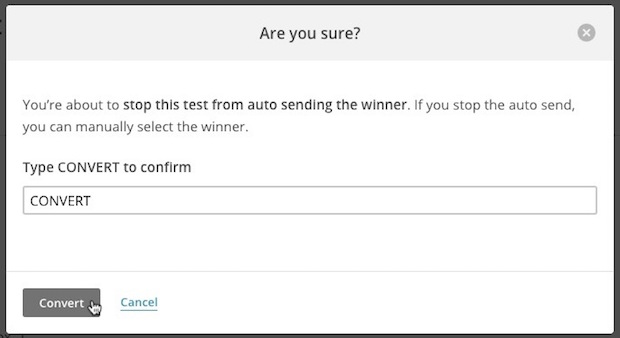 Modal that asks if you're sure you want to stop the automatic send, with Convert typed in all caps in the field.