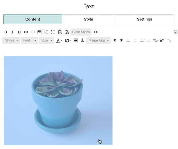 how to add text on an image