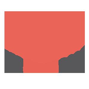 The Brand Race Logo