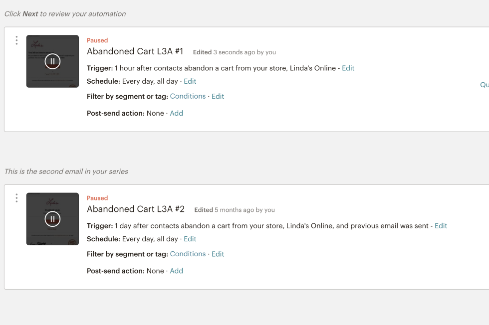 Screenshot of abandoned cart notifications automation set up.