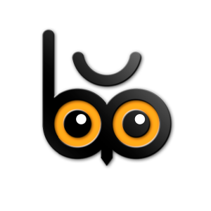 Bubo Branding Logo