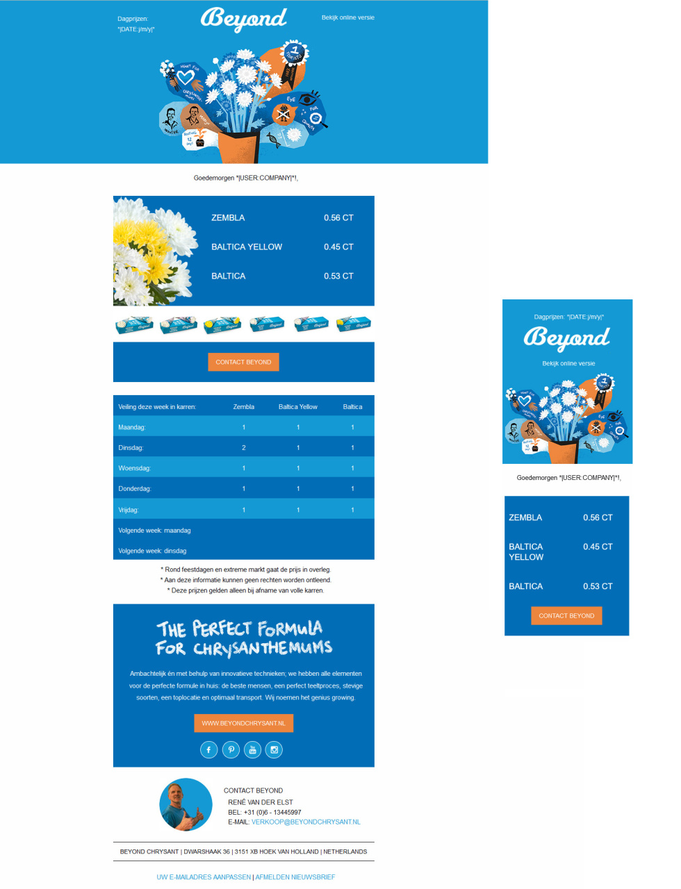 Email template featuring image header, graphic design, images, and text descriptions of products. Various shades of blue contain content against white background. Other colors included are orange and yellow.