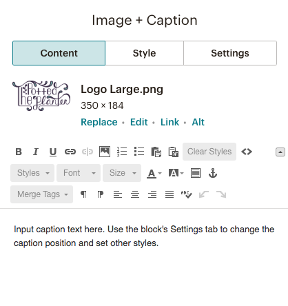 Set styles and input caption text