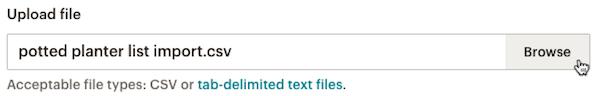 import-csv-upload-browse