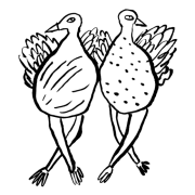 Doodle of two birds dancing.