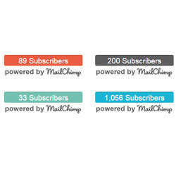 Display the number of Mailchimp subscribers you have on your WordPress site.