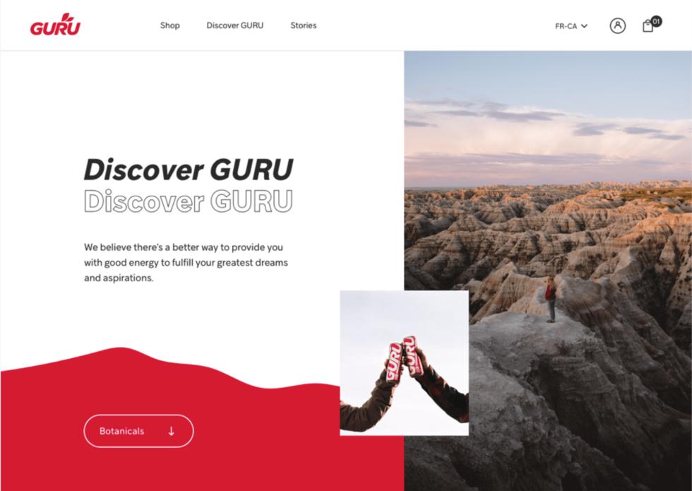 Image of Guru website