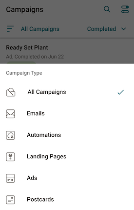 Campaign filter options