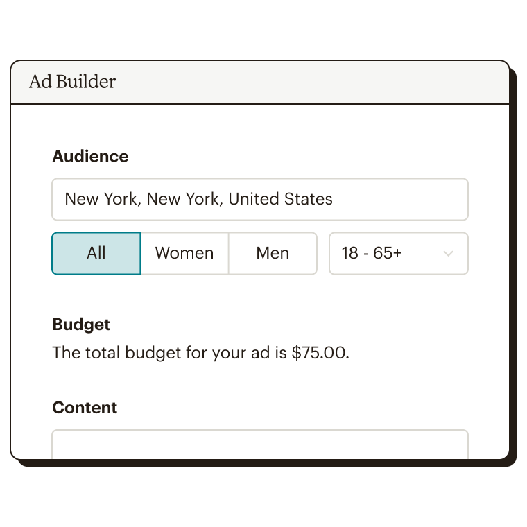 Audience and budget step of the Facebook ad builder