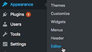 wordpress appearance editor