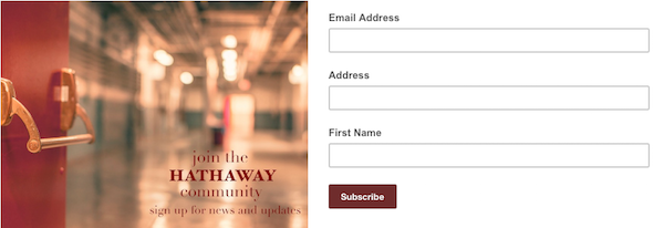 Captura de pantalla: imagen de un formulario de suscripción emergente de muestra