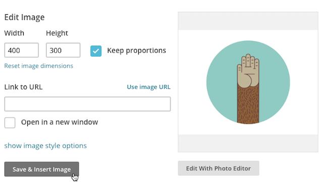 Cursor clicks save & insert image.