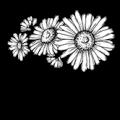 Daisy Digital Marketing Logo