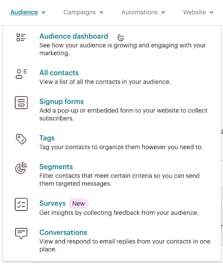 Cursor Clicks - Audience dashboard - Audience Dropdown