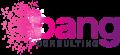 Bang Consulting Ltd logo