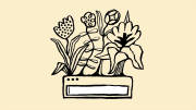 Illustration of a search bar with flowers growing out of it.