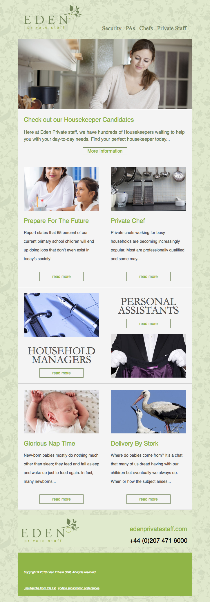 Newsletter Design & Build, Account Management, Content Creation & eCommerce Automation