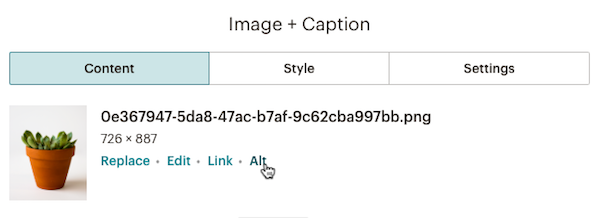 The editing pane for an image content block with the cursor over the link to add alt text.