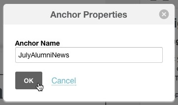 Anchor Properties box