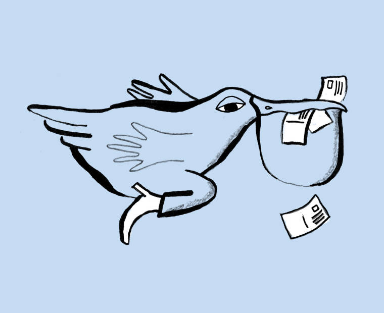 Illustration of a seagull with a postcard