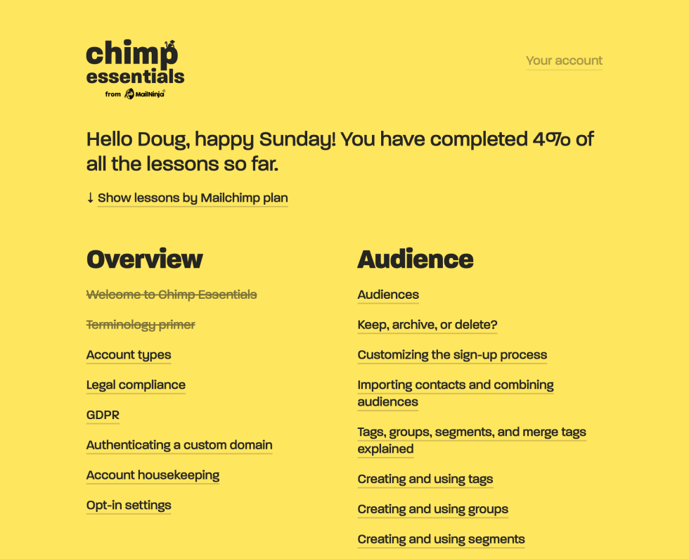 Chimp Essentials services overview