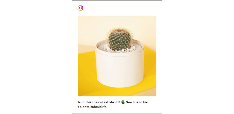Example of an Instagram post