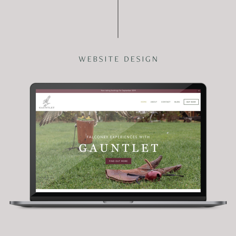 """Image of Apple laptop open to desktop view of website featuring green grass with glove. Bottom half of falcon picking up potted plant in background. The words """"Gauntlet"""" in white text overlay image."""
