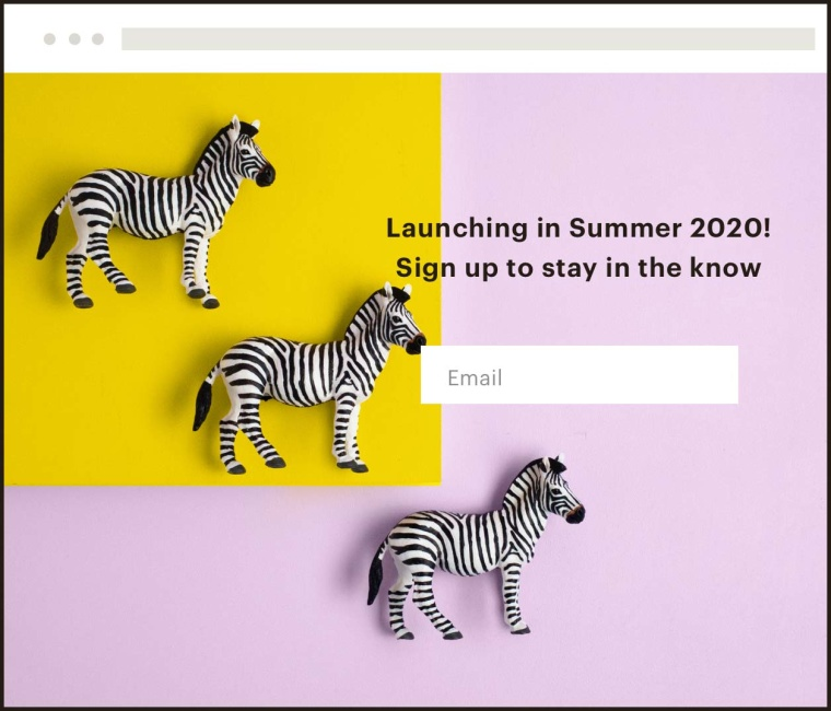 "A landing page with toy zebras on it and a signup form with the text, ""Launching in Summer 2020! Sign up to stay in the know""."
