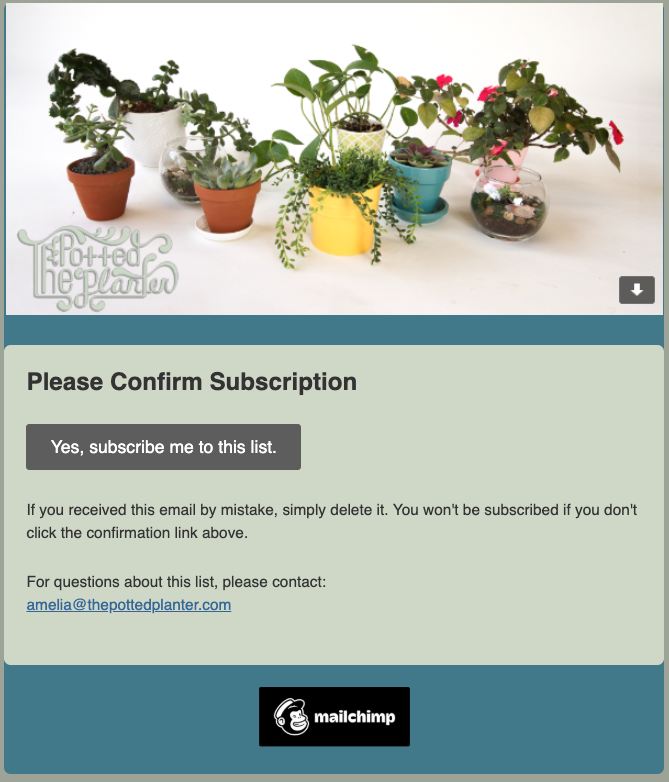 Opt-in confirmation email - pottedplanter