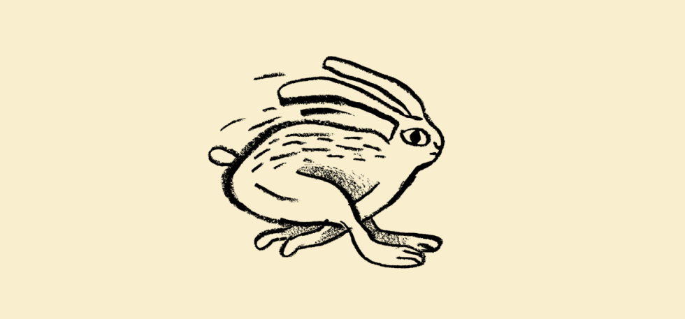 Doodle of a fast moving bunny.