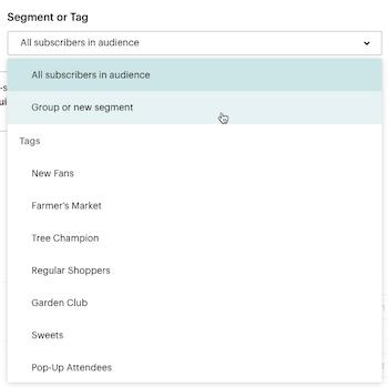 El cursor hace clic - Grupo o nuevo segmento - Desplegable de segmento