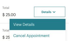 appointment-view-details-screen