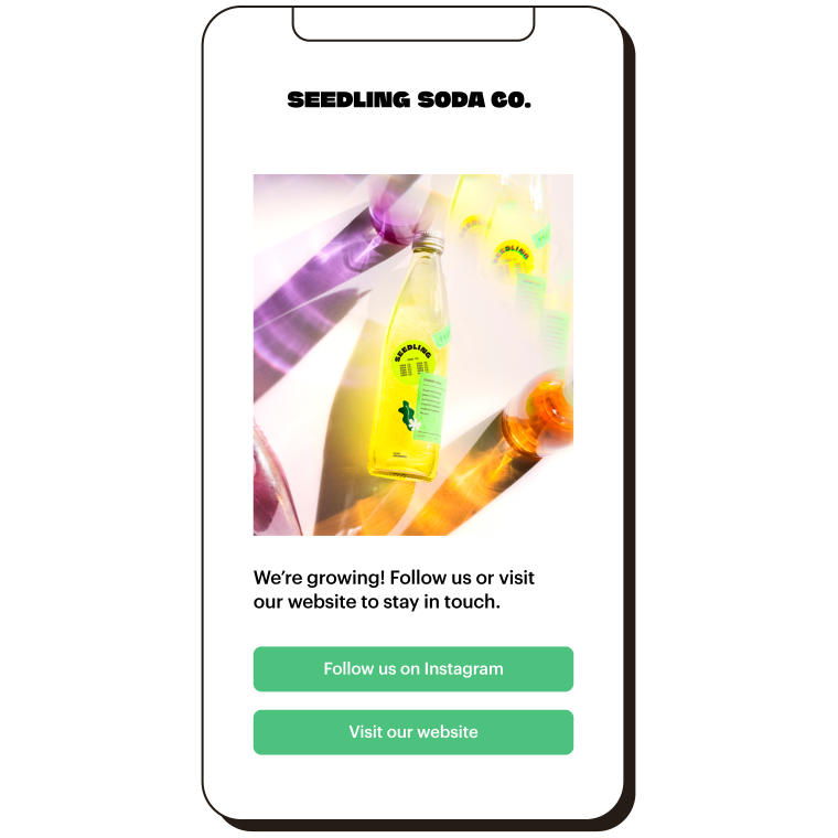 A mobile landing page for Seedling Soda Co. Image with links to follow on Instagram or visit the website.