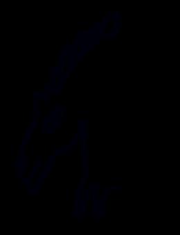 Illustration of a horse head and upper torso