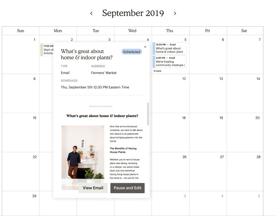 Marketing Campaign Calendar - Detail View