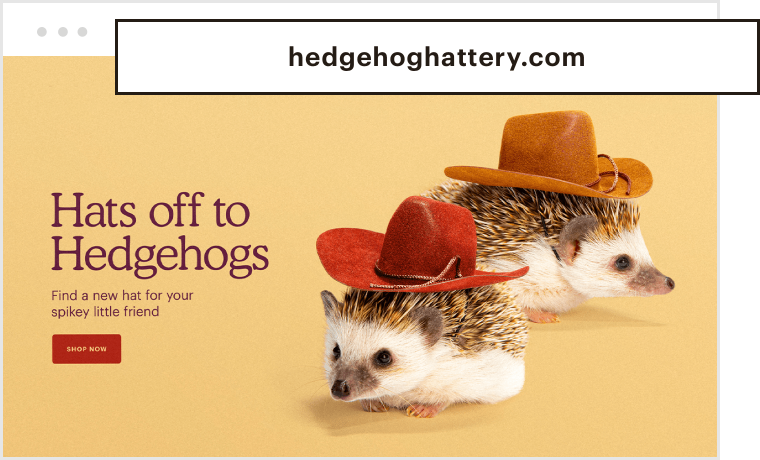 A landing page for a website that sells Hats for Hedgehogs