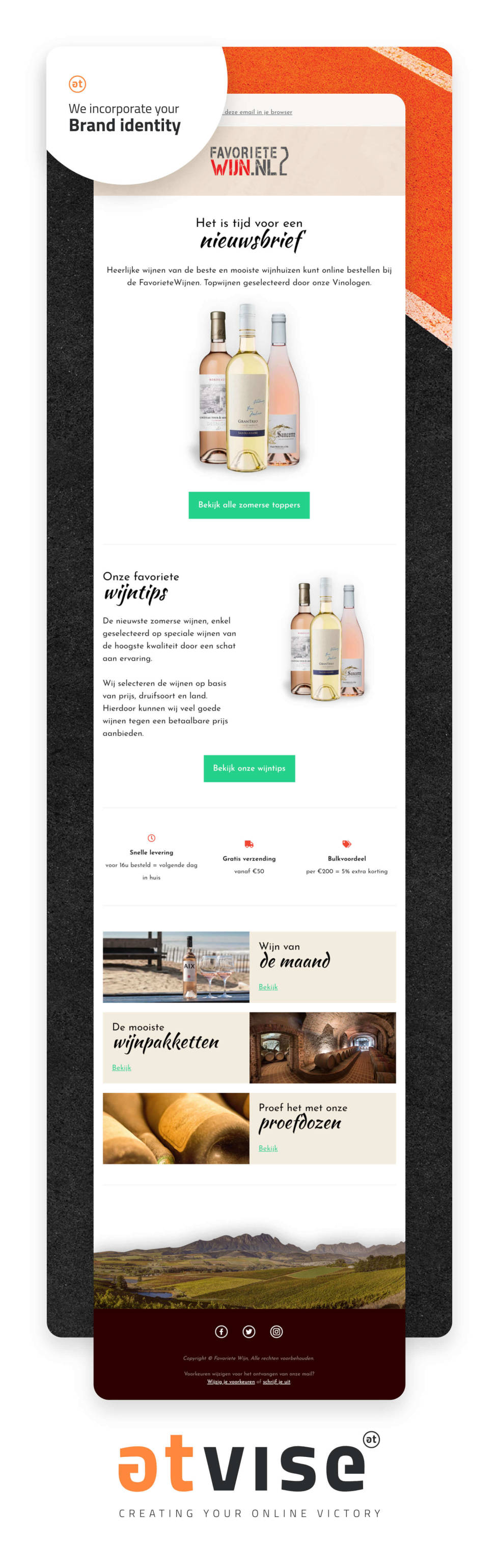 Newsletter template in email format showing branding for wine company.