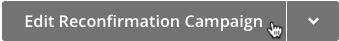 Cursor clicks edit reconfirmation campaign button.