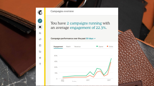 An example of the Campaign Overview within Mailchimp