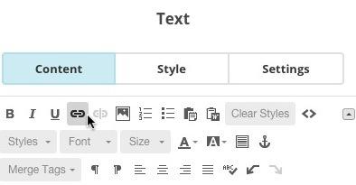 camp editor link-text