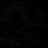 [KB] a bird rolling around