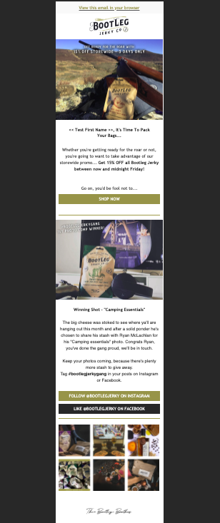 "Image of an email newsletter for the company ""Bootleg"""