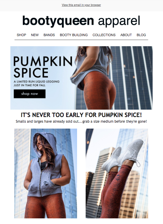 A custom email template for Bootyqueen Apparel