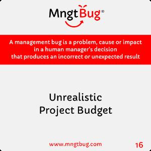Management Bug 16 Unrealistic Project Budget